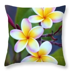 "Backyard Plumeria Throw Pillow by Jade Moon .  Our throw pillows are made from 100% spun polyester poplin fabric and add a stylish statement to any room.  Pillows are available in sizes from 14"" x 14"" up to 26"" x 26"".  Each pillow is printed on both sides (same image) and includes a concealed zipper and removable insert (if selected) for easy cleaning."