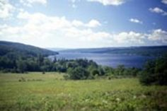 KEUKA LAKE STATE PARK, NY Wedding Picnic, Clear Blue Sky, Finger Lakes, Virtual Tour, Wine Country, State Parks, Tours, America, Explore