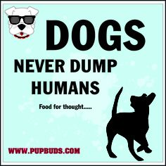 DOGS  Never Dump Humans .....