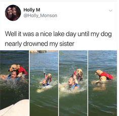 more like trying to kill her | TrendUso #swim #Swimming #drown #drowning #dog #dogs #lifevest #life #pet #pets #animal #animals #funny #hilarious #humor #humorous #humour #meme #memes #memesdaily #lol #wtf #omg #rofl #haha #hahaha #smh