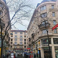 Hoje Viena amanheceu sob chuvisco mas nada que atrapalhe a turistar pela cidade. Quais são os planos de vocês para hoje?  by vivaviena