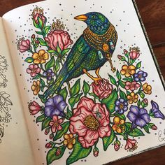 Cool coloring