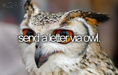 send a letter via owl