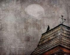 My Brother's Moon   Flickr - Photo Sharing!  Jamie Heiden
