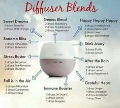 What is a carrier oil? Essential oils are often used along with a carrier oil as a safety precaution. Learn how to dilute your doTERRA essential oils safely and effectively. Essential Oil Diffuser Blends, Doterra Essential Oils, Uses For Essential Oils, Humidifier Essential Oils, Diffuser Recipes, Doterra Oils, Doterra Diffuser, Doterra Blends, Oils For Diffuser