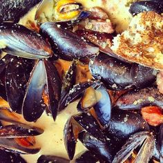 Mussel Bound on Pinterest | Mussels, Steamed Mussels and Mussel ...