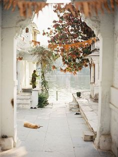 Udaipur, India // © Andrew Jacona