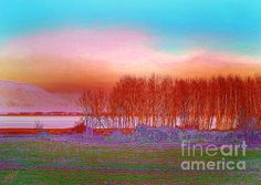 Magdalen DgArtStudio - Sunset at the lake Framed Prints, Canvas Prints, Fine Art America, Natural Beauty, This Is Us, Tapestry, Sunset, Wall Art, Artwork