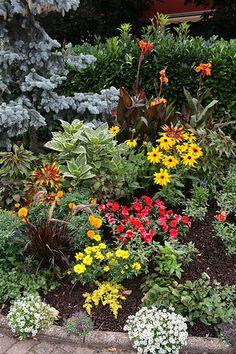 Flower Garden in Molsheim