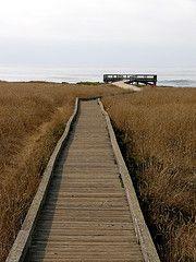 MacKerricher State Park - Fort Bragg, CA - Kid friendly list of tidal pools.