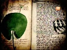 Voynich Manuscript : Mysterious book that contains many UNDECIPHERED sec...