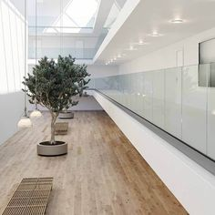 No handrail (2) Glass Balustrade, Glass Railing, Frosted Glass, Clear Glass, Channel Glass, Glass And Aluminium, Laminated Glass, Modern Stairs, Modern Glass