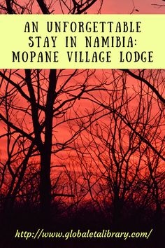 An Unforgettable Stay in Namibia: Mopane Village Lodge http://www.globaletalibrary.com/ (Photo by Karla Strand)