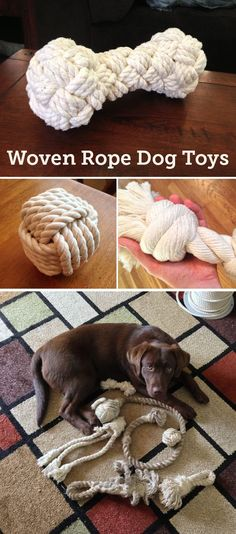 diy paracord ring dog toy diy projects pinterest paracord toy and dog