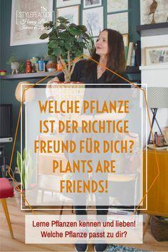 Finde die perfekten Pflanzen für deinen Typ und dein Zuhause. Ist es bei dir hell oder dunkel, fährst du oft in Urlaub, hast du Erfahrung mit Zimmerpflanzen oder bist du Einsteiger in den Urban Jungle? Mit diesen Tipps schaffts auch du dir ein grünes Zuhause, das genau zu dir passt! [unbezahlte werbung] #zimmerpflanzen #pflanzenpflege #grünerdaumen #greenthumb #plantlover #pflanzentipps #planttips Outdoor Living, Diy Home Decor, Diy Projects, Diy Crafts, Interior, Dark, Indoor House Plants, Decorating Ideas, Advertising
