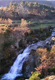 Autumn photo taken in the Alv?o Natural Park. Vila Real  Portugal.