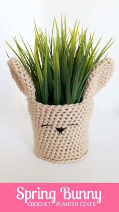 Darling bunny rabbit crochet planter cover -- perfect for spring and Easter! | The Inspired Wren