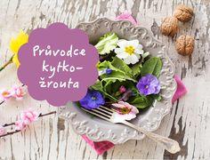 Jak jíst jedlé květy, inspirace na rostlinné recepty, infografika