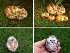 animal images for rockpainting