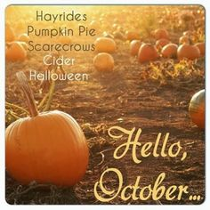 8 Best Hello images | Seasons of the year, 12 months, Hello october