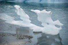 USA - Park Narodowy Zatoki Lodowców