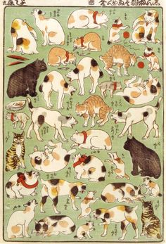 Utagawa Yoshifuji Cat poses woodblock print Japan More cats here: http://kiritz.jp/2012/08/utagawa-yoshifuji/ and here: http://www.wabei-mono.com/blog/2010/11/17/the-cats-meow/