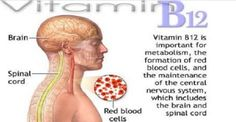 Vitamin B12 And Evrything You Need To Know About Itg