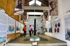 IPN celebra 20 anos de descoberta do Cemitério dos Pretos Novos