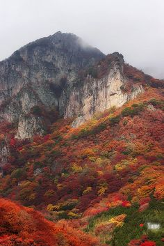 The mountains in fall