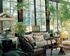 plants for sunrooms | Found on lookbook.elledecor.com