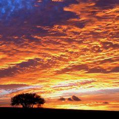 Stephenville sunset (: