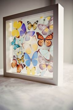 Butterfly Box frame. You choose the colours by flutter2me on Etsy