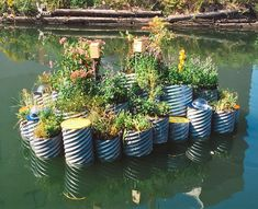 This tiny floating garden is successfully cleaning the most polluted waterway in the U.S. http://www.theplaidzebra.com/this-tiny-floating-garden-is-successfully-cleaning-the-most-polluted-waterway-in-the-u-s/