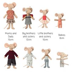 mouse crafts Yoyo and Flo Maileg mouse size guide Little Brothers, Little Sisters, Baby Mouse, Shape And Form, Tooth Fairy, Small Gifts, Boy Or Girl, Bunny, Teddy Bear