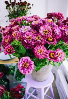 floral twitter headers - Google'da Ara