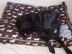 Washable and Durable Doggie Duvet Covers!