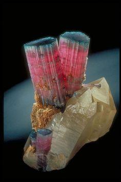Tourmaline on quartz / Mineral Friends
