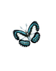 Tiffany butterfly brooch of enamel and diamonds in platinum and 18 karat gold