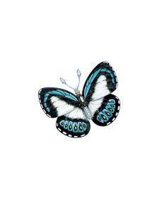 Tiffany Butterfly Brooch