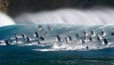 'Blue Planet II' producer talks about filming groundbreaking nature documentary