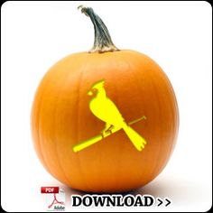 This will definitely be my pumpkin this year if/when the Cardinals find a way to make the playoffs!