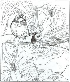 coloring page Nature around the house - Nature around the house  Great site for coloring pages for kids and adults