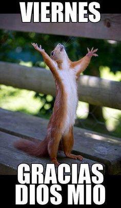¡Ya es viernes! :) #1001consejos #frases #friday