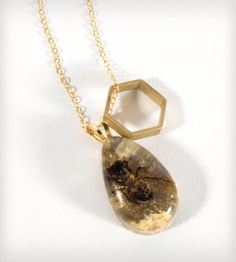 Brass Honeycomb & Real Bee Necklace