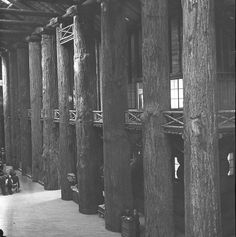 Interior of the Forestry Building - Photo shows a scene from the Lewis and Clark  Exposition held at Portland, Oregon in 1905