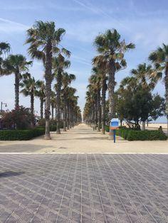 Playa Malvarrosa / Malvarrosa Beach en Valencia, Valencia