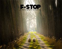 Chickens, rabbits, goats & a Call from F-Stop Magazine for their Issue #71: Humans vs. Nature. No Entry Fee.  One of our Featured Artists made it into their last Portfolio issue. Make us proud...