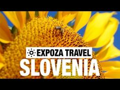amazing unseen travel and tourism tips: Journey movie about destination Slovenia.| travel tips | tourism tips