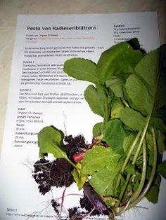 Pesto von Radieserlblättern - Leberkassemmel und mehr
