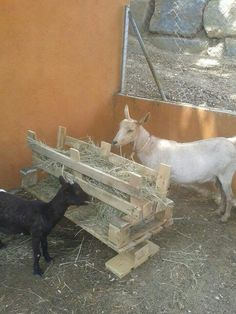 Animal Feeder/Manger made from pallets....  great for low cost nativity scene for next Christmas, too!   TY